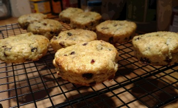 Gluten Free Scones, Dried Cranberries, Lemon
